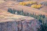 aspen, spruce  and sandstone cliff