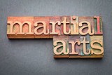martial arts word abstract in wood type