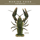 Lobster. Marine Food