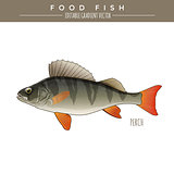 Perch, Food Fish