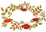 Border from autumn leaves and rowan. EPS10 vector illustration
