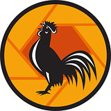 Rooster Crowing Shutter Circle Retro