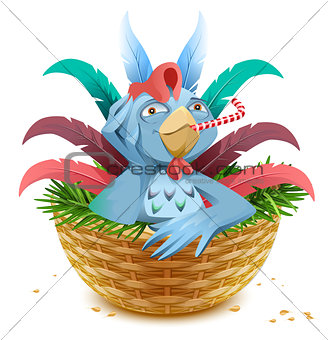 Blue Christmas rooster symbol of 2017 sits in basket nest on spruce branch