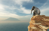 Elephant sitting on edge