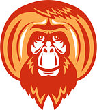Orangutan Bearded Front Retro