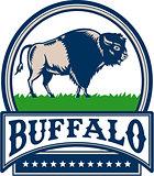 American Bison Buffallo Banner Circle Woodcut