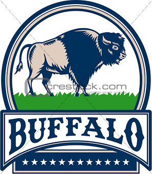 American Bison Buffallo Banner Circle Woodcut