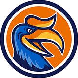 Hornbill Head Circle Retro