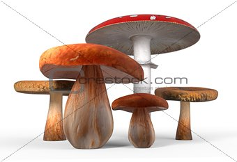 ceps, paxil, amanita muscaria mushrooms isolated on white 3d illustration