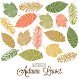 Set of watercolor colorful autumn leaves