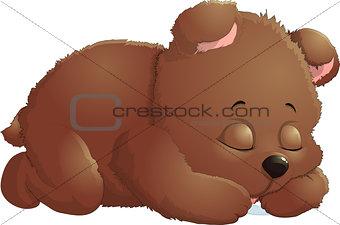 Bear in beautiful pose