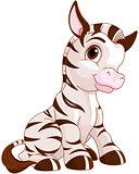 Cute Zebra