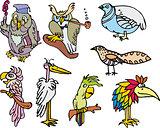 Set of cute funny birds