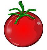 tomato cartoon isolated on white background