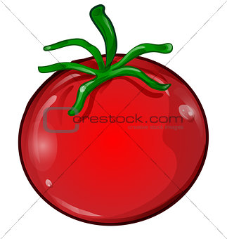 tomato cartoon isolated on white background