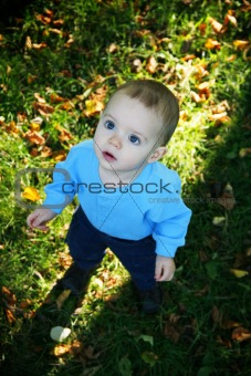 Little boy outdoors