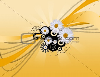 daisy abstract background