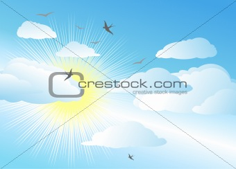 sky and sun / vector background