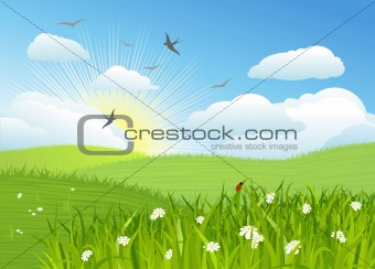 Beautiful sun day / Vector illustration