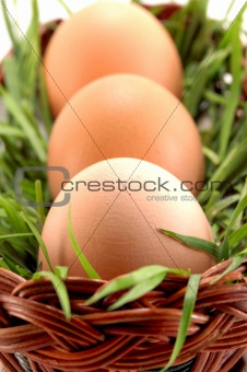 Three Easter eggs in basket with grass