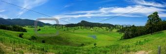 Rolling Green Meadow