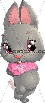 beautiful gray rabbit