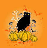 Black owl and pumpkins.
