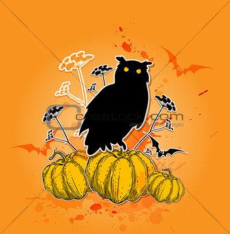 Black owl and pumpkins.