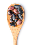 dried beans in wooden spoon