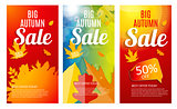 Shiny Autumn Leaves Sale Banner Template Set. Business Discount
