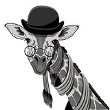 Giraffe in Bowler Hat