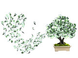 Money tree with euro banknotes