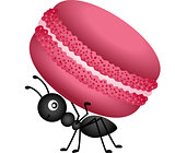 Ant Carrying a Macaroon