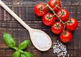 Fresh tomatoes with basil and spoon with salt on grunge board