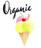 Ice cream cartoon with organic lettering isolated