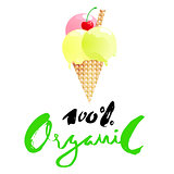 Ice cream cartoon with 100 percent organic lettering isolated