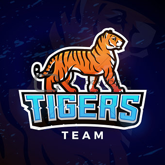 Tiger sport logo vector. Mascot design template. Football or baseball illustration. College league insignia, High School team logotype on dark background.
