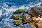 sea waves and rocks covered with algae