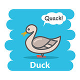 Duck vector illustration