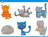 funny cat characters set