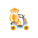 Monkey On A Scooter Stylized Fantastic Illustration