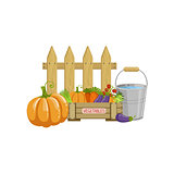 Crate Of Vegetables, Bucket With Water And A Fence