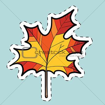 Autumn maple leaf, nature seasons. label sticker