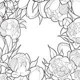 Floral black and white frame