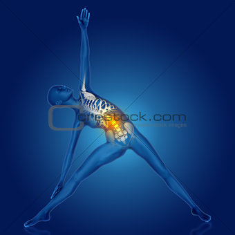 3D female figure in yoga pose with spine highlighted