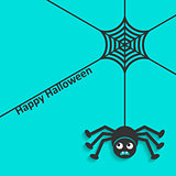 Happy halloween spider web and spider