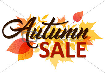 Autumn background for sale
