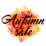 Design for autumn sale