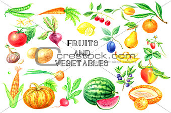 Watercolor set of fruits and vegetables