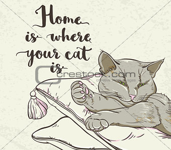 Cat sleeping on a pillow and lettering.